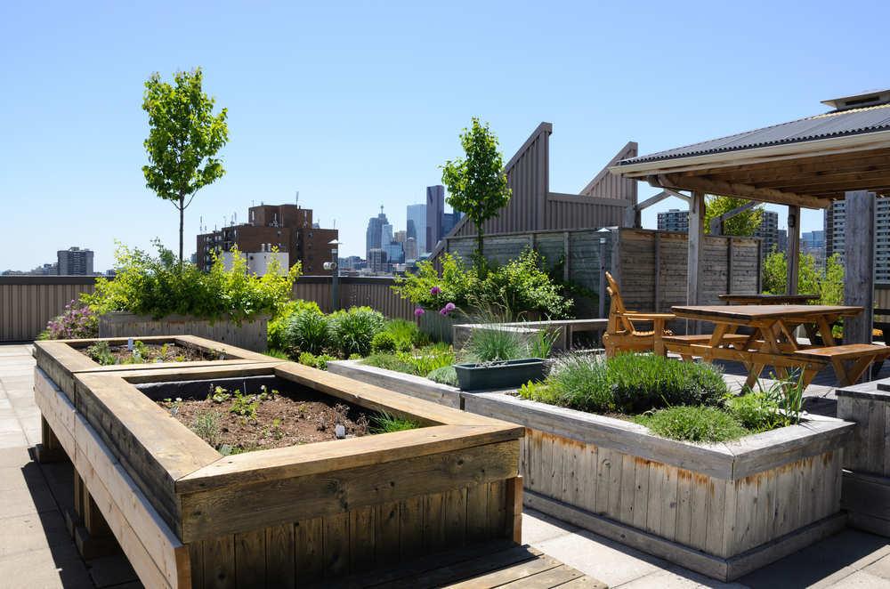 Un huerto ecológico en la comunidad de vecinos