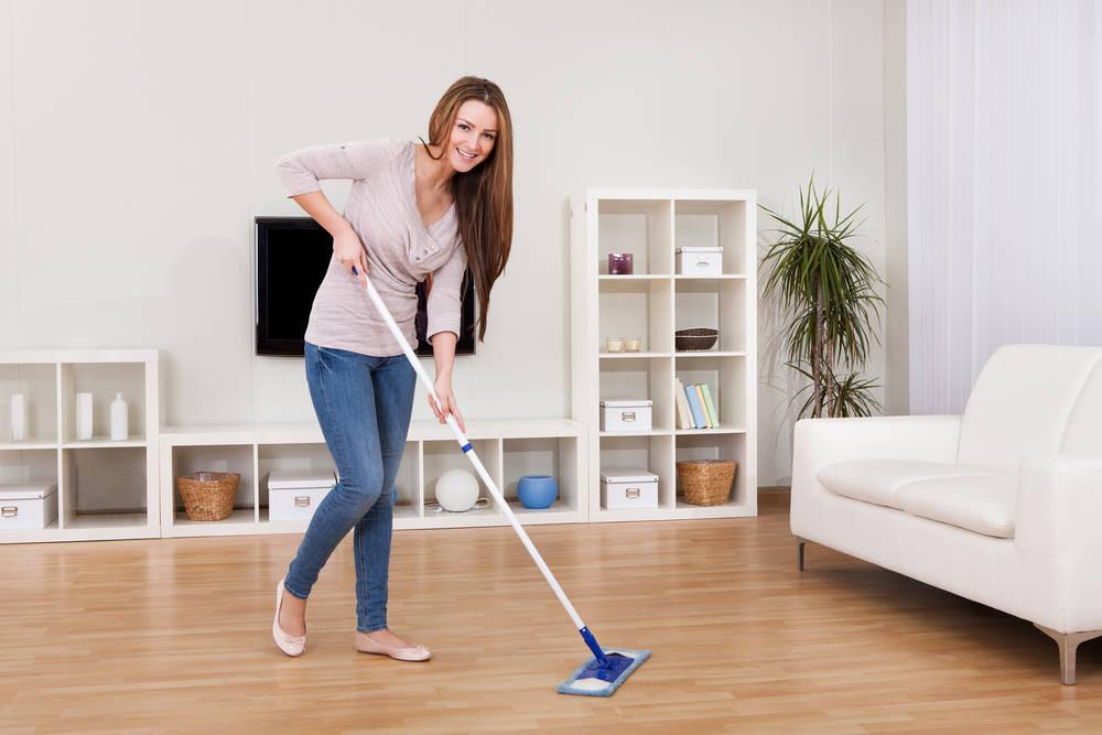 Prevención y eliminación de plagas en el hogar