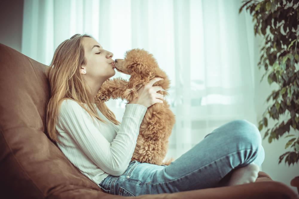 Convivencia con Animales en Casa